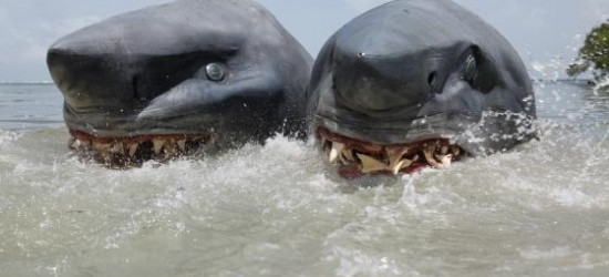 two_headed_shark_show